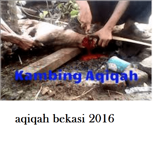 paket aqiqah bekasi 2016