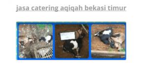 kambing aqiqah murah bekasi timur